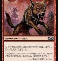 赤単における、ジャッカルの使い魔の使い勝手【Pauperカード個別考察】